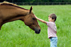 gentle_horse_with_child